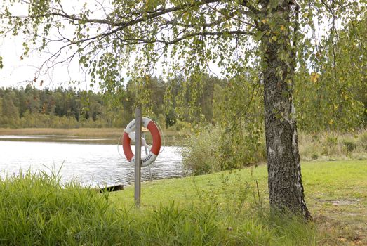 Pond with lifebuoy fit for fishing, swimming and good times!