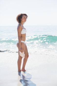 pretty brunette in swimsuit