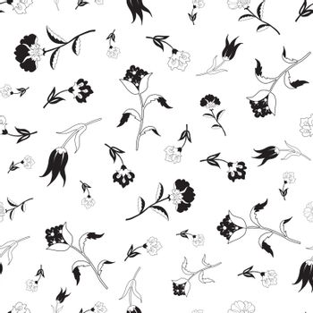 Vector Black White Vintage Field Flowers Seamless Pattern graphic design
