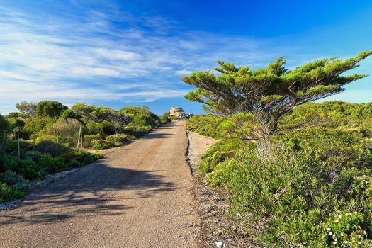 Sardinia - small road in San Pietro isle