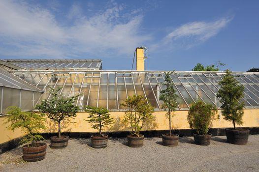 Old Greenhouse in Bergianska garden in Stockholm.