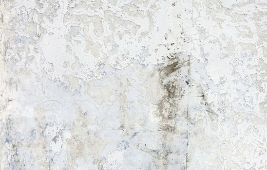 Grunge white background cement old texture wall