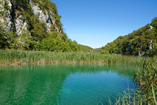 Pond bank landscape in bright summer day in Plitvice, Croatia