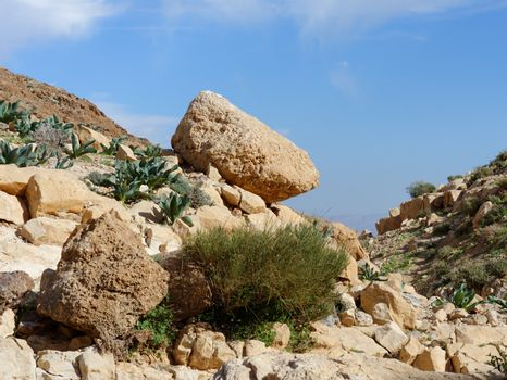 Yellow rock on the hill slope in desert in spring