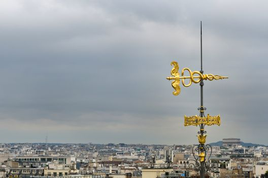 Roof Decorated with Parisian skyline