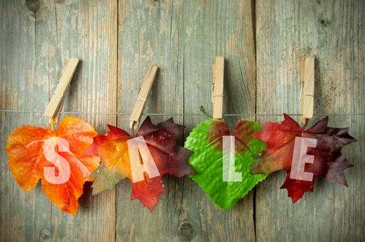 Autumn leaves hanging from a clothes line with sale text