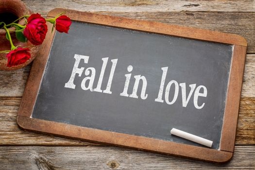 Fall in love advice  - white chalk text on a vintage slate blackboard with red roses against rustic wood