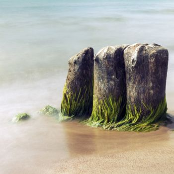 Long exposure picture of old mossy groines in the sea with smooth water. Picture with cross processing effect.