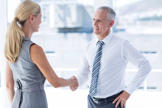 Two smiling business people shaking hands