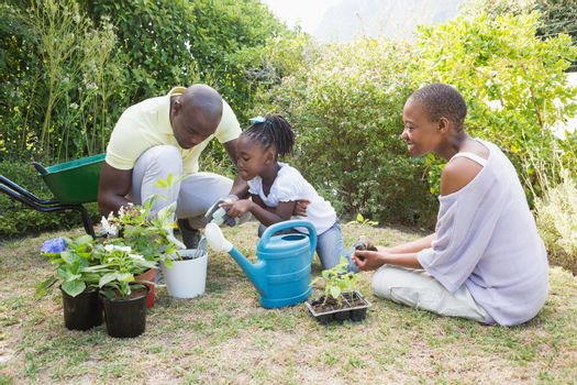 Happy smiling family plant a flowers together