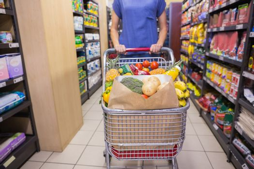Woman pushing trolley in aisle