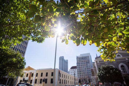 Sun shining over a city