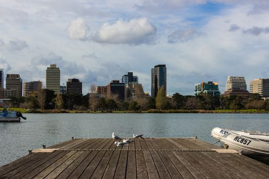 A shot taken of Melbourne from Albert Park Lake, with a pier and seaguls in the foreground.