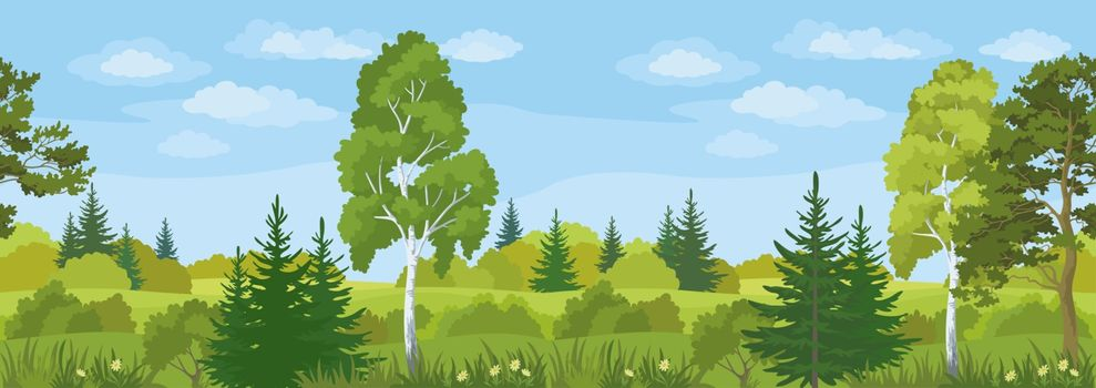 Seamless Horizontal Landscape, Summer Forest