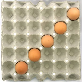 Divide symbol show by eggs in paper tray