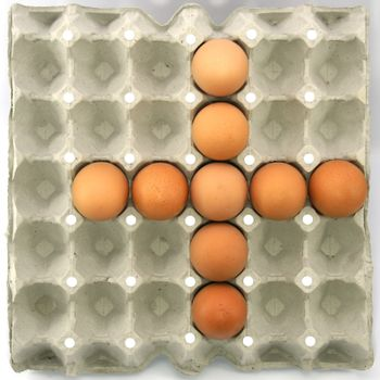 Plus symbol show by eggs in paper tray