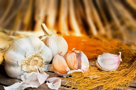 Vintage garlic in still life style