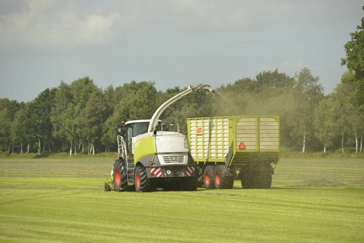 Agriculture, forage harvester and transport grass with green tractor and grass trailer