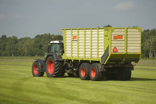 Agriculture, transport of cut grass with green tractor and grass trailer