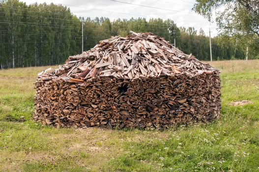 A Stack of Firewood in a Forest Glade