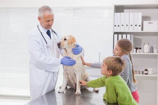 Vet examining a dog with its owners in medical office