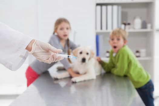 Vet using syringe for a dog in front of its scared owners in medical office