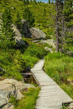 Wooden tourist path