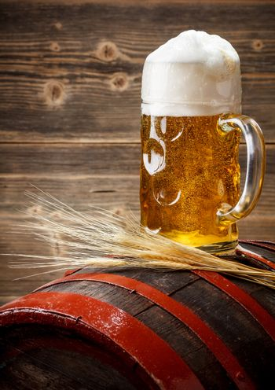 Beer in the mug