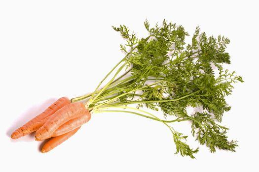 bio carrots