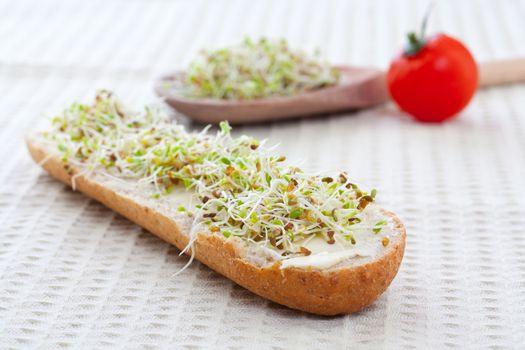 sprout germ breakfast