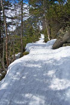 Tourist path