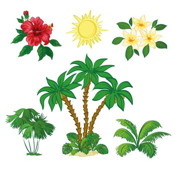 Sun, Palm Trees, Flowers and Leaves