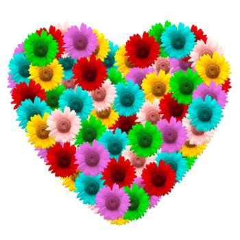 heart shape of colorful sunflower