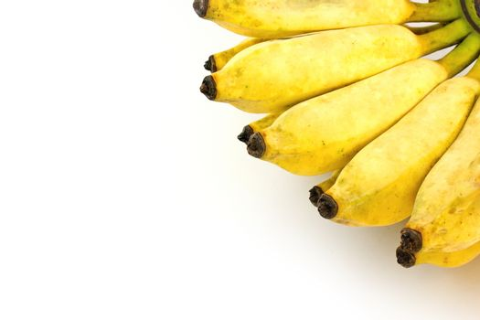 Cultivate banana on white background