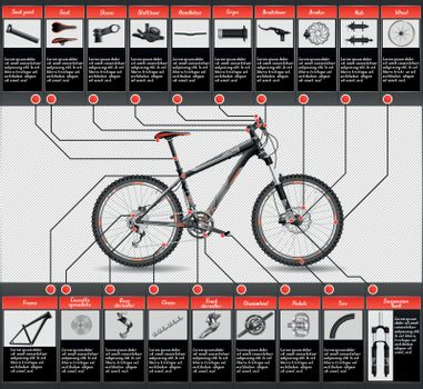 Vector illustration with bicycle elements.