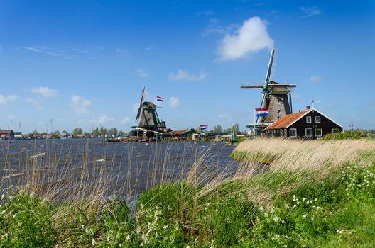 Wind mill of Zaanse Schans