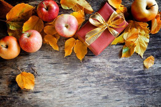 Autumn Present Backdrop