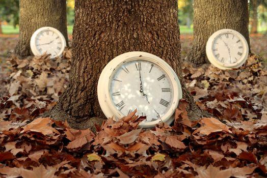 Fall time season clocks leaf forest background