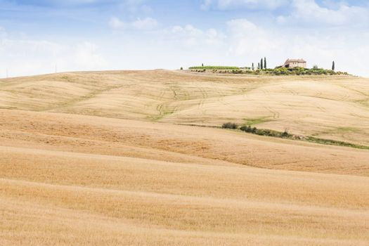 Tuscany, Val d'Orcia area. Wonderful countryside in a sunny day, just before rain arrival