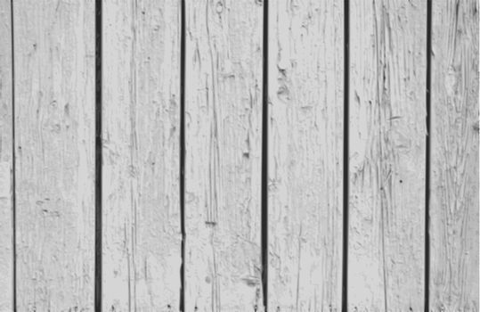 The  Vector Vintage  White Background Wood Wall