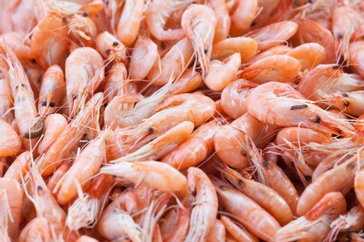 handful beautiful boiled  of sea shrimps on a table