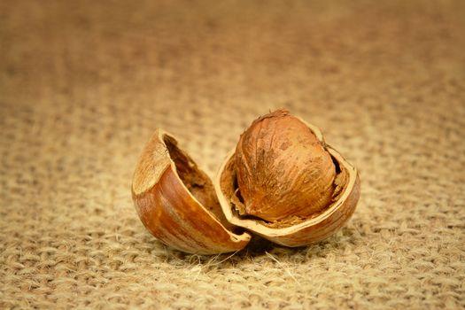 Peeled Hazelnut