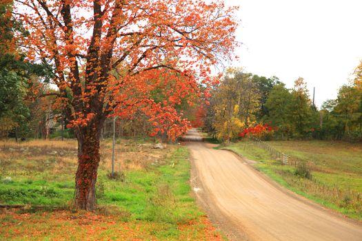Rural drive