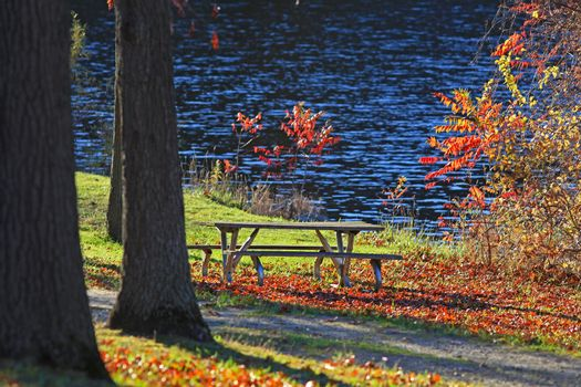 Picnic table under autumn trees