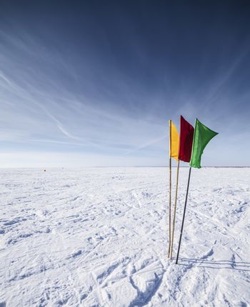 The Flags on the background of winter sky