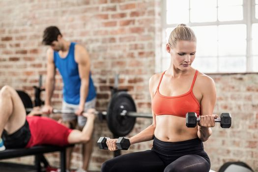 Fit people do some weightlifting together
