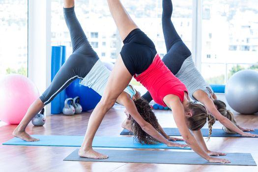 Women doing half downward dog posture