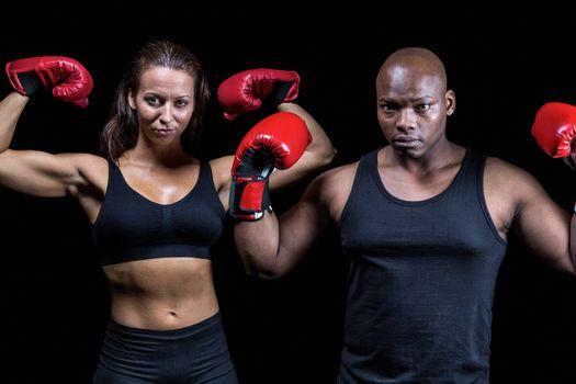 Portrait of boxers flexing muscles