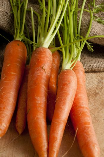 carrots out of a jute sack