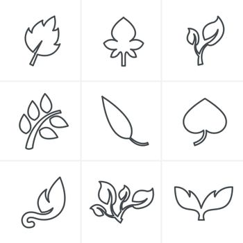 Line Icons Style  leaf icon